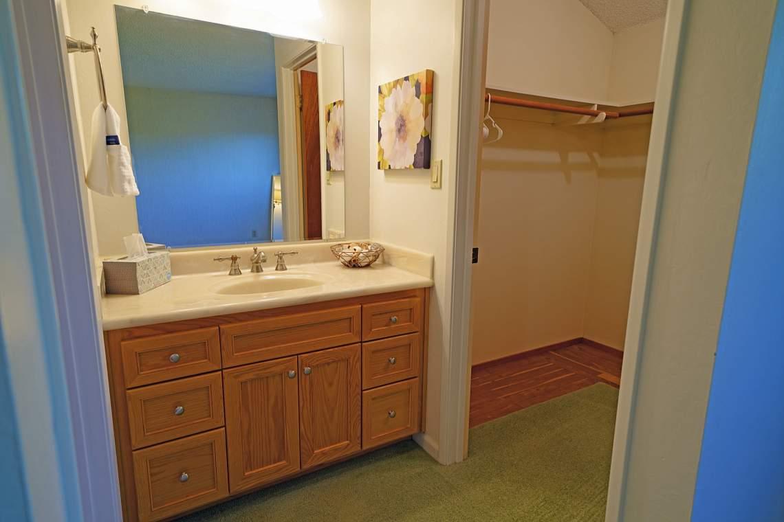 Master-vanity-and-closet