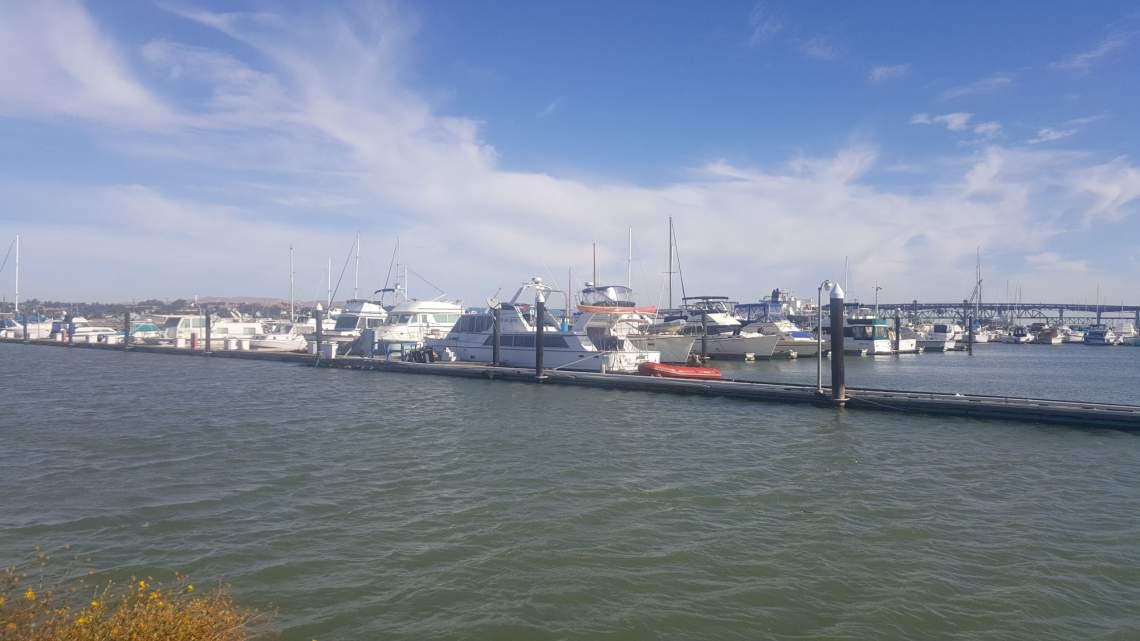 mtz marina