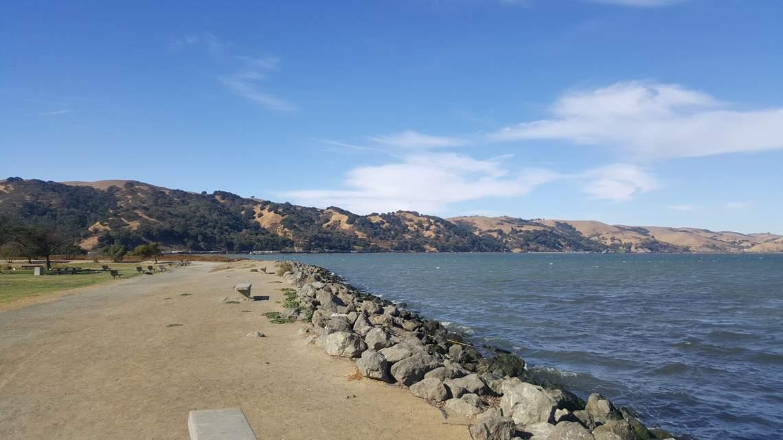 mtz shoreline